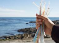 Plastic Straws Banned in Malibu