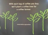 Starbucks Plants Trees for Coffee Bags