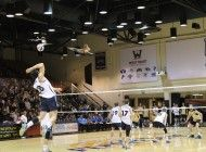 Men's volleyball struggles against UCLA