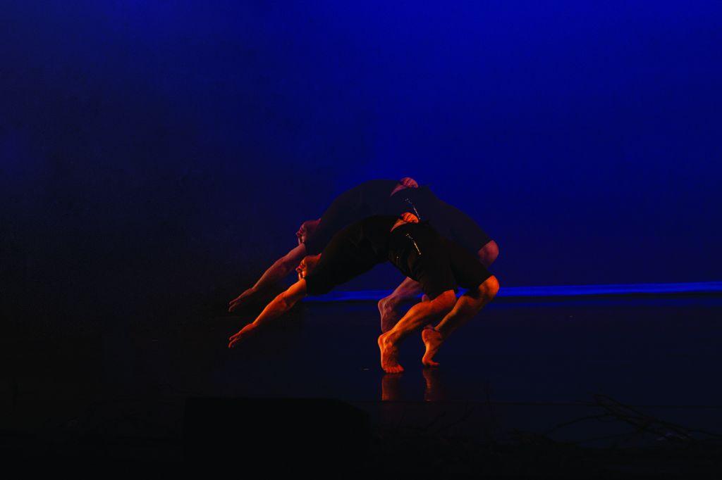 dancer3 online.jpg