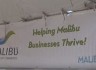 Malibu Health and Wellness Fair