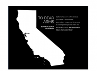 Bearing Arms: What it Takes to Buy a Gun in California