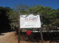 Big Hearts Rebuild Big Heart Ranch