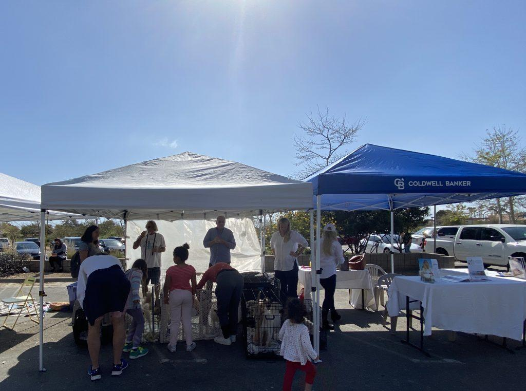People gather outside of the 4PK Rescue and Coldwell Banker tents to view dogs up for adoption. Coldwell Banker bought both tent spaces so that 4PK Rescue could set up adoption sight.