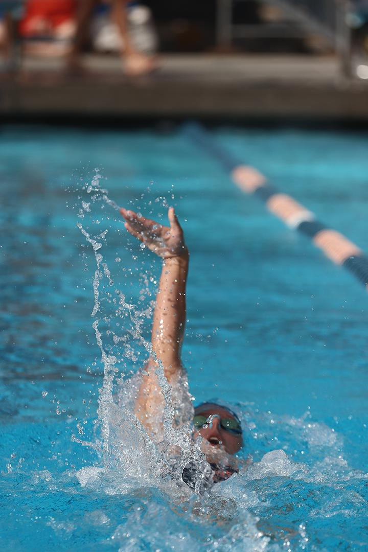 Sophomore swimmer and Graphic staff writer Emily Morton competes in the backstroke. Morton broke numerous school records during her first year in the pool. File photo