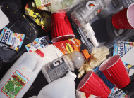 Pepperdine Study Aims to Turn Single-Use Plastic Repulsion Into a Greater Discussion