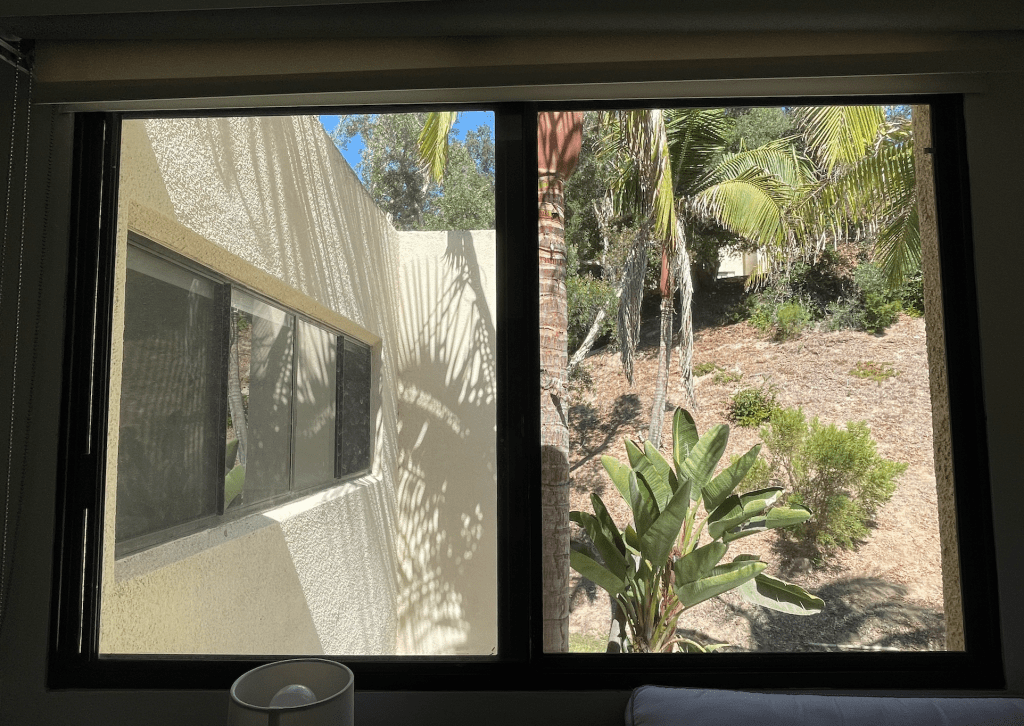 The view outside my room showcases a dirt hill and the trunk of a palm tree. This view is not one of the premier options on campus, but it does afford extra privacy. Photo by Addison Whiten