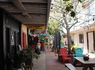 Bohemian Bliss: A Journey Through Topanga Canyon