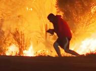 CA Wildlife Center Helps Thomas Fire Rabbit