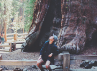 The Coast of California: Finding the Hidden Gems