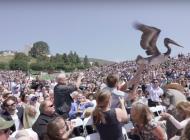 Pelicans Make a Scene at Seaver Graduation