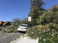 Pepperdine Students Know Little about Natural Disaster Safety