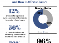 The Effects of the Gender Ratio Issue in the Classroom
