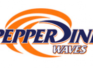 Pepperdine Athletics' Branding Faces Bevy of Challenges
