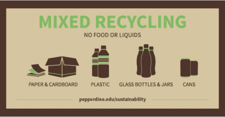 The Dirt on Waste: Understanding College Recycling Programs