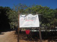 Big Hearts Rebuild Big Heart Ranch